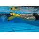 Finis Z2 Gold Zoomers laste ujumislestad